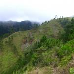 Mt. Ugo Day 1
