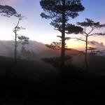 Mt. Ugo Day 2: Trekking to the Summit