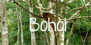 Bohol; Backpacking Philippines