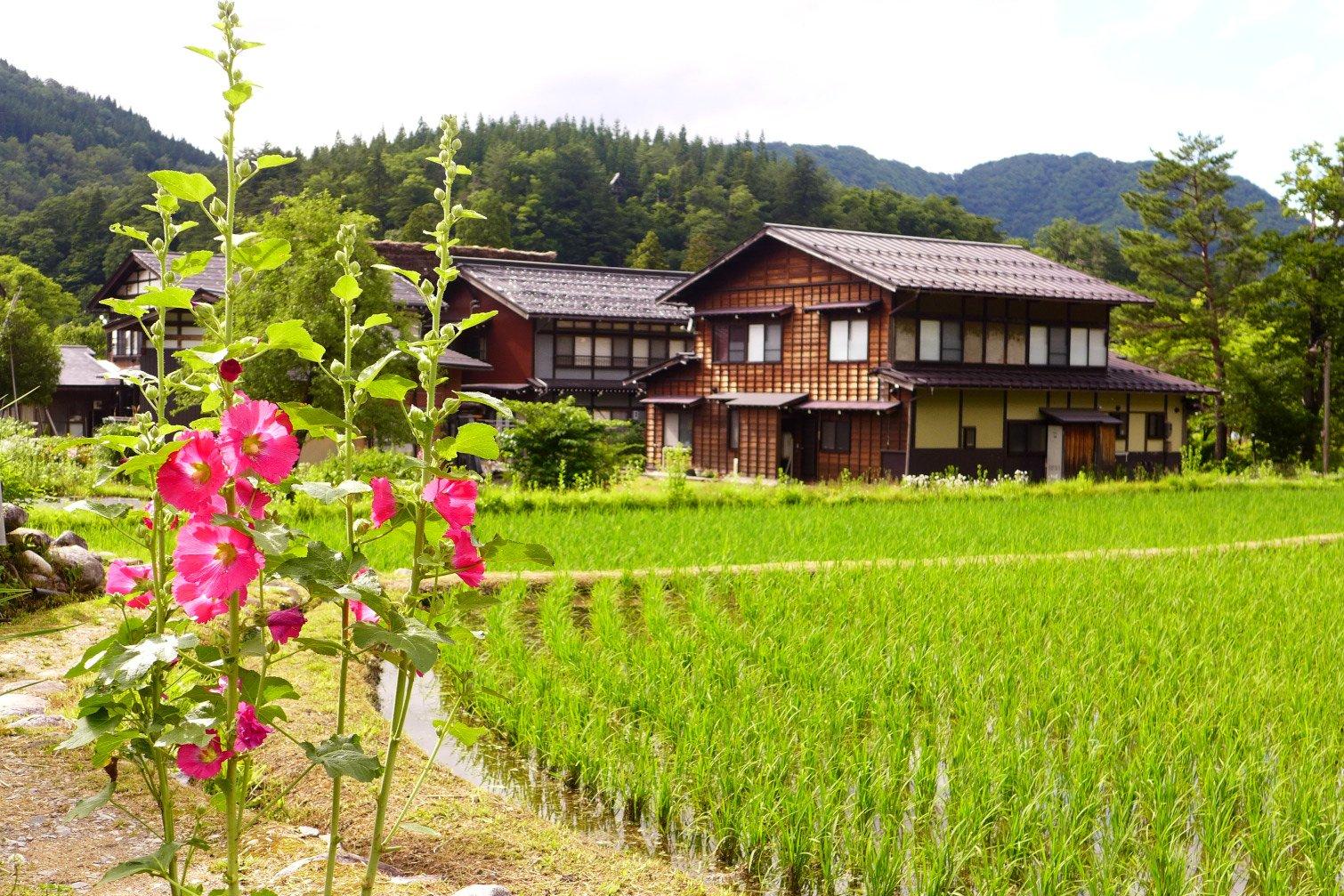 Shirakawa-go; Shirakawa-go Japan travel; What to do in Shirakawa-go Japan; What to see in Shirakawa-go Japan; D.I.Y. Japan itinerary